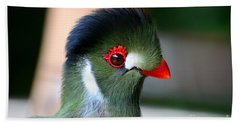 Delicate Green Turaco Bird With Red Beak White Patches And Black Crown Beach Towel