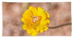 Desert-marigold Moth Beach Towel