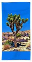 Desert Spring Beach Sheet