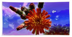 Devil's Paintbrush Beach Towel