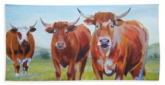 Devon Cattle Beach Towel