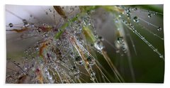 Dew On Fountain Grass Beach Towel by Joe Schofield
