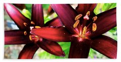 Dimension Lily 2 Beach Towel