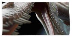 Dinosaur Suchomimus Beach Towel