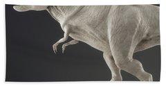 Dinosaur Tyrannosaurus Beach Towel