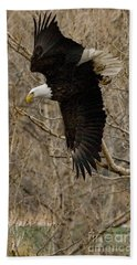 Beach Towel featuring the photograph Diving Eagle by J L Woody Wooden