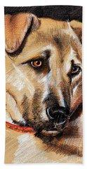 Dog Portrait Drawing Beach Sheet