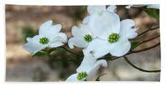 Dogwood 2 Beach Towel by Andrea Anderegg
