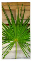 Door Decor Belize Style Beach Sheet