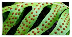 Dots Beach Towel by Kristine Merc