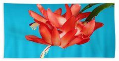 Double Bloom In Red Beach Sheet by E Faithe Lester