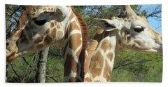 Giraffes With A Twist Beach Sheet
