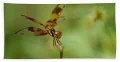 Beach Sheet featuring the photograph Dragonfly 2 by Olga Hamilton