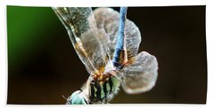 Dragonfly Headstand Beach Towel by Kim Pate