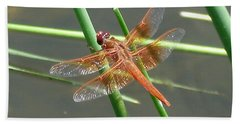 Beach Towel featuring the photograph Dragonfly Orange by Kerri Mortenson
