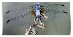 Dragonfly Wing Details II Beach Towel