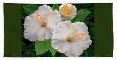 Dreamy Blooms - White Hibiscus Beach Sheet by Ben and Raisa Gertsberg