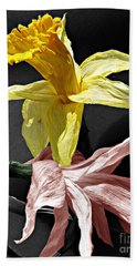 Beach Towel featuring the photograph Dried Daffodils by Nina Silver