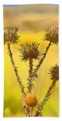 Dry Brown Thistle Beach Towel