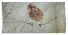 Early Spring Visitor Beach Towel