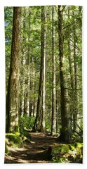 East Sooke Park Trail Beach Towel by Marilyn Wilson