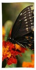Eastern Swallowtail On Marigold Beach Towel