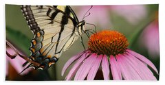 Swallowtail And Coneflower Beach Sheet by Janice Adomeit
