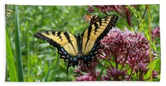 Eastern Tiger Swallowtail On Joe Pye Weed Beach Towel by Neal Eslinger