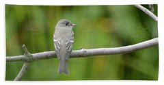 Eastern Wood Pewee Beach Towel