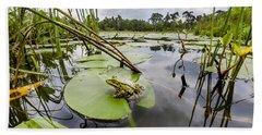 Edible Frog On Lily Pad Overijssel Beach Towel
