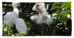 Egret Chicks Beach Towel by Ron Davidson