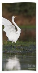 Egret Dancing Beach Towel by Bryan Keil