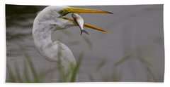 Beach Towel featuring the photograph Egret Having Lunch by Jerry Gammon