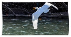 Egret In Flight Beach Sheet