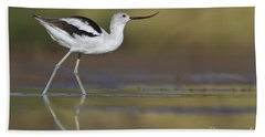 Elegant Avocet Beach Towel by Bryan Keil