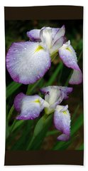 Beach Towel featuring the photograph Elegant Purple Iris by Marie Hicks