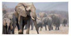Elephant Feet Beach Towel
