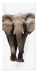 Elephant Isolated Beach Towel