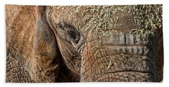 Elephant Never Forgets Beach Towel by Miroslava Jurcik