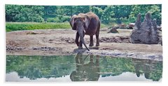 Elephant Three Beach Sheet by Joyce  Wasser
