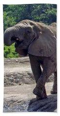Elephant Two Beach Towel