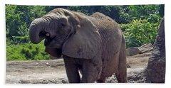 Elephant Two Beach Sheet by Joyce  Wasser