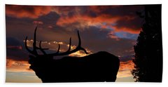 Elk At Sunset Beach Towel