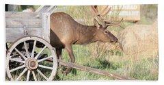 Elk Drawn Carriage Beach Towel