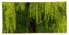 Enchanting Weeping Willow Tree  Beach Sheet by Carol F Austin