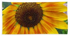 End Of Summer Sunflower Beach Sheet by Barbara McDevitt
