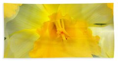 Beach Towel featuring the photograph Endless Yellow Daffodil by Judy Palkimas