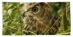 Eurasian Eagle-owl 2 Beach Towel