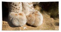 Eurasian Lynx Feet Beach Towel