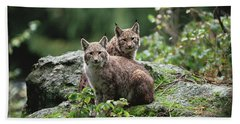 Eurasian Lynx Pair Europe Beach Towel